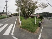 IMG_2556.jpg
