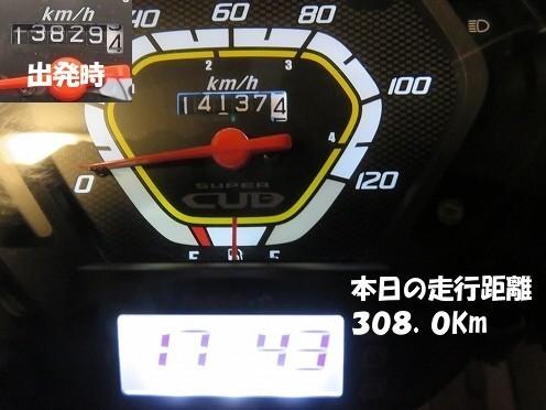 IMG_4327.jpg
