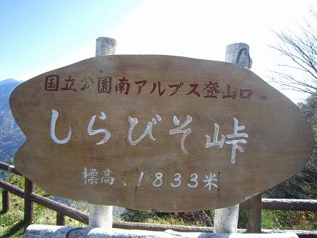 IMG_6460.jpg